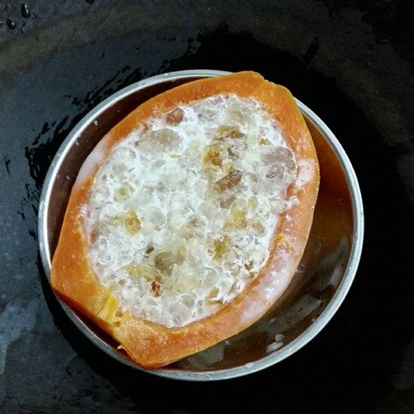 双木成林6的木瓜牛奶炖桃胶做法的学习成果照