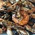 【黔味大虾】——海虾的贵州劲爆吃法