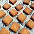 焦糖饼干(黄油版+素食版)